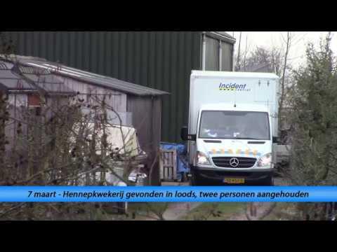 Hennepkwekerij gevonden in loods in Tholen, twee personen aangehouden